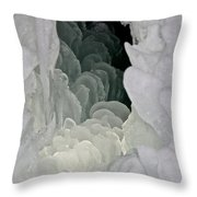 Ice Scales Throw Pillow