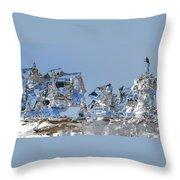 Ice Ships Throw Pillow