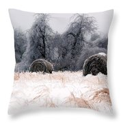 Ice Storm And Hay Bales In The Blue Rdige Mountains Throw Pillow
