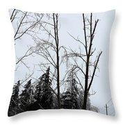 Ice Storm Poplars Throw Pillow