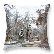Ice Storm...day 6 Throw Pillow