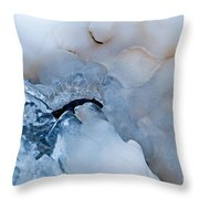 Ice Transformation V Throw Pillow