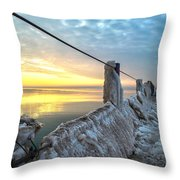 Ice Walk Throw Pillow