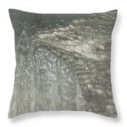 Ice Wing Plastic Throw Pillow