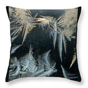 Ice Wings Throw Pillow