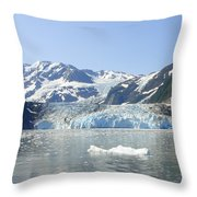 Iceburg Throw Pillow