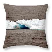 Iceburg With Passenger Throw Pillow