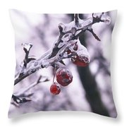 Iced Berries Throw Pillow
