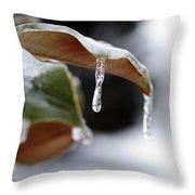 Iced Magnolia Throw Pillow