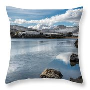 Iced Over Throw Pillow