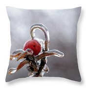 Iced Rose Hips Throw Pillow
