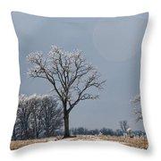 Iced Tree Throw Pillow