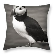 Iceland Puffin Throw Pillow