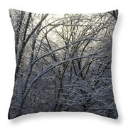 Iceshine Throw Pillow