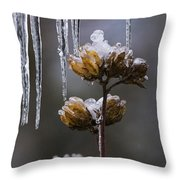 Icicles And Ice Flowers Throw Pillow