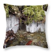 Icicles In The Stream Throw Pillow