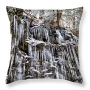 Icicles On Forbidden Drive Throw Pillow