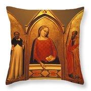 Icon Case Throw Pillow