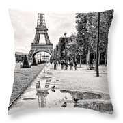 Icon Reflected Bw Throw Pillow