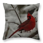 Iconic Avian Throw Pillow