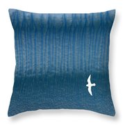 Icy Angel Throw Pillow