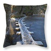 Icy Boardwalk Throw Pillow