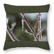 Icy Branch-7463 Throw Pillow