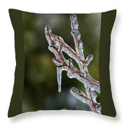 Icy Branch-7498 Throw Pillow