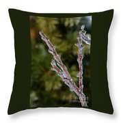 Icy Branch-7520 Throw Pillow