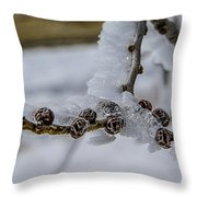 Icy Branch Throw Pillow