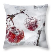 Icy Branch With Crab Apples Throw Pillow