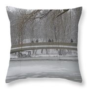 Icy Central Park Throw Pillow