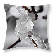 Icy Elegance Throw Pillow by Elena Elisseeva