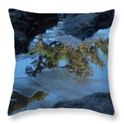 Icy Evergreen Reflection Throw Pillow