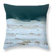 Icy Lake Michigan Throw Pillow