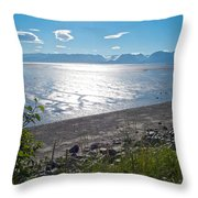 Icy-looking Kachemak Bay In Sunlight From Homer Spit-ak  Throw Pillow