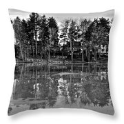 Icy Pond Reflects Throw Pillow