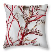 Icy Red Dogwood Throw Pillow