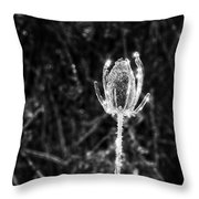 Icy Thistle In Monochrome Throw Pillow