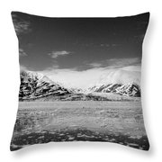 Icy Water Throw Pillow by Camilla Brattemark