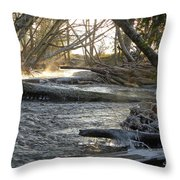 Icy Winter Morning Throw Pillow