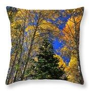 Idaho Autumn Colours Throw Pillow