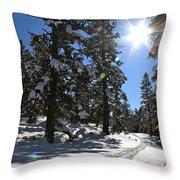 Idaho Blue Bird Day Throw Pillow