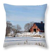 Idaho Falls Winter Throw Pillow