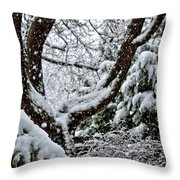 Idaho Spring Throw Pillow