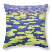 Idyllic Pond Throw Pillow