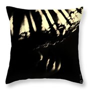 If I Could  Throw Pillow