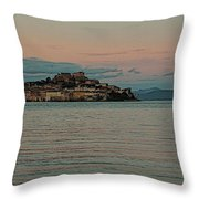 If I Ever Had Throw Pillow