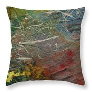 If I Had Only Known Throw Pillow