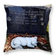 If Love Could Have Saved You Throw Pillow